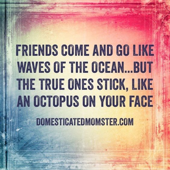 friendship quotes 24
