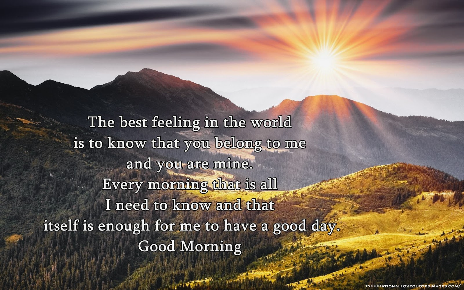 good morning quotes 50