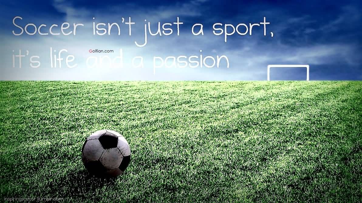50 Soccer Quotes Quotevill