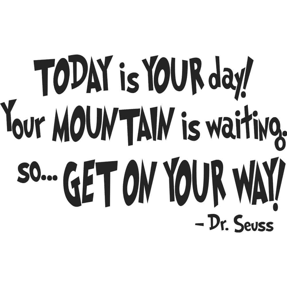 Dr. Seuss Quotes 19