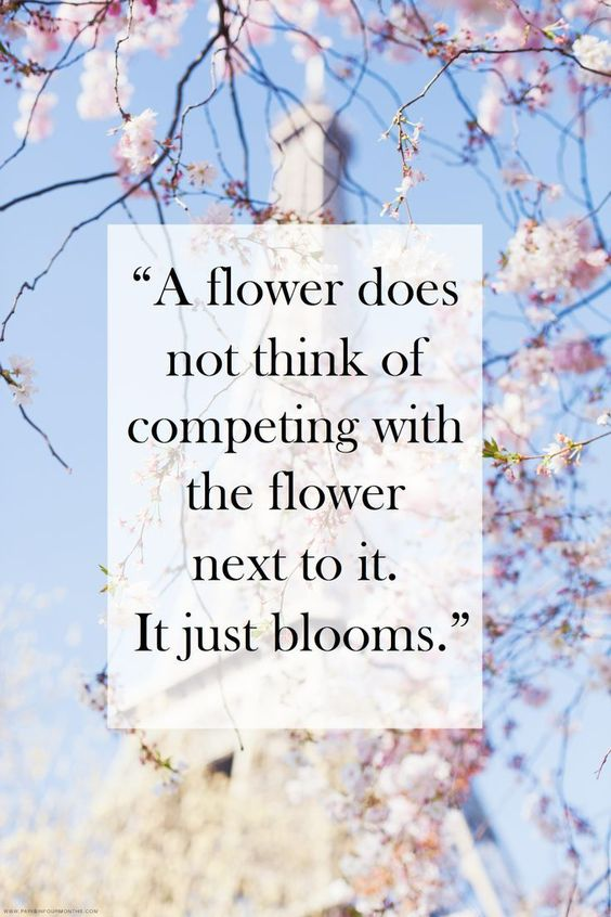 beauty quotes 1