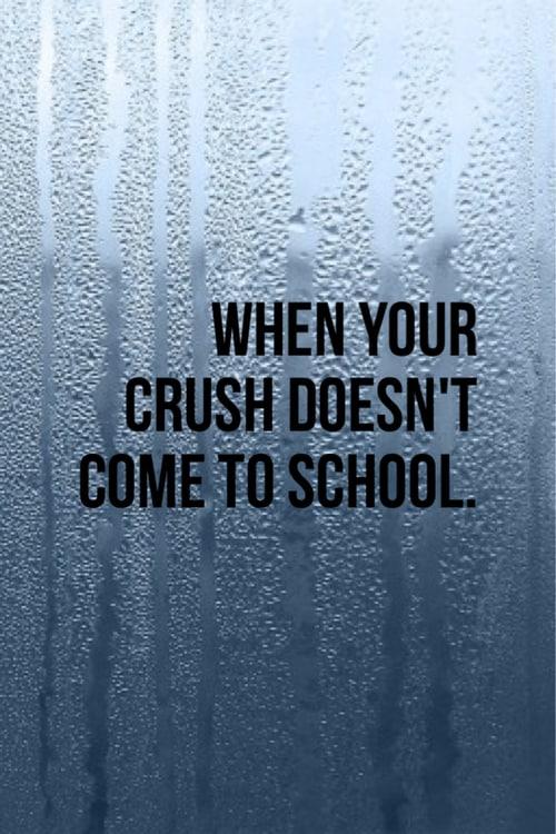 crush quotes 6