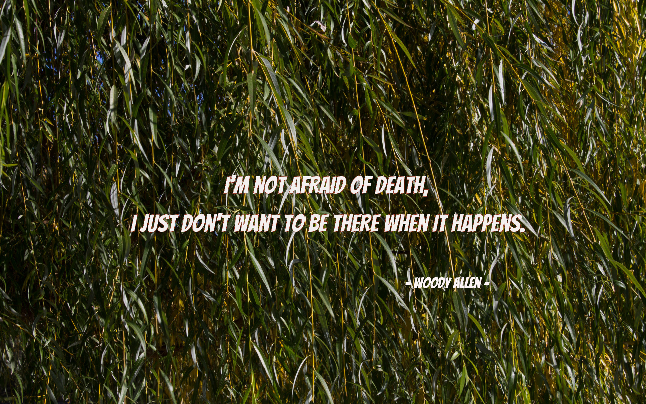 death-quotes 15