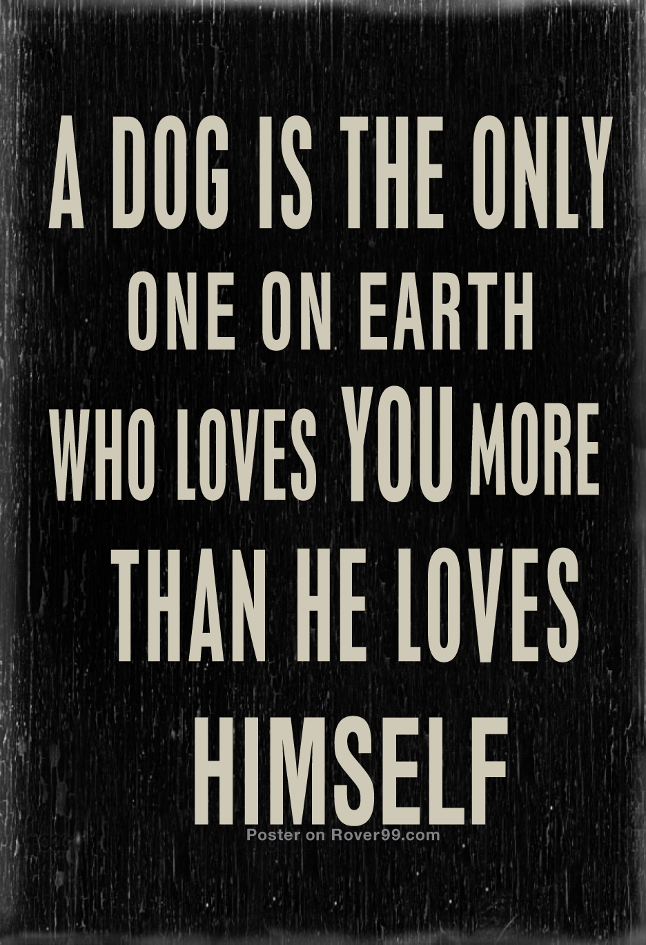 dog quotes 29