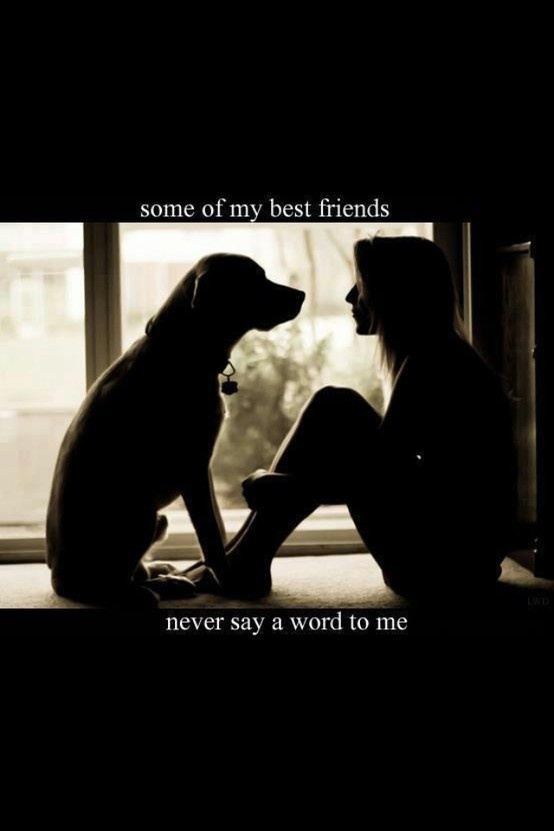 dog quotes 37