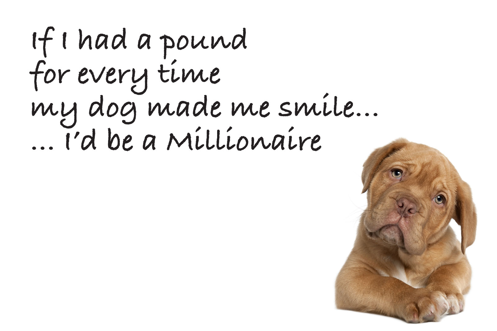 dog quotes 49