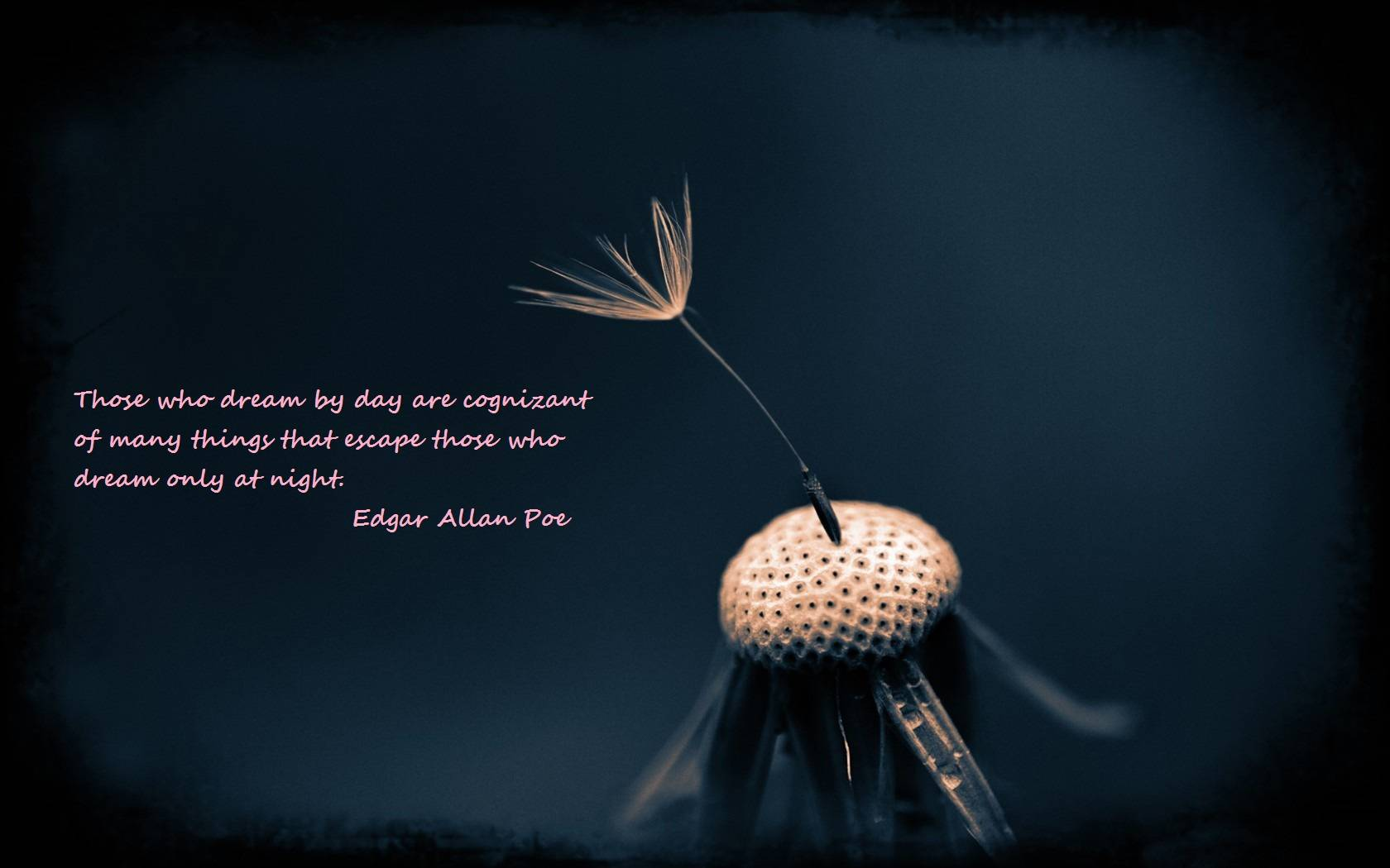 edgar allan poe quotes 17