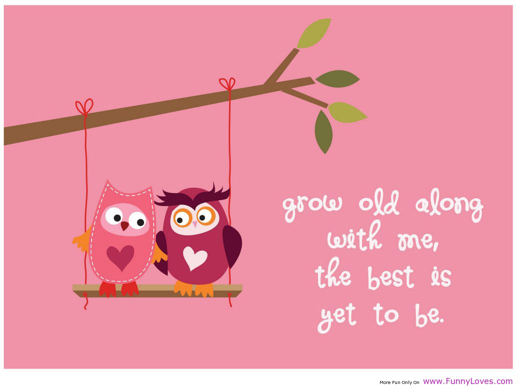 funniest love quotes 7