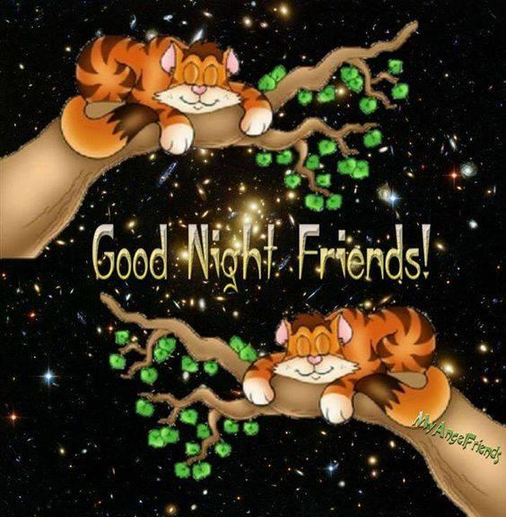 good night quotes 36