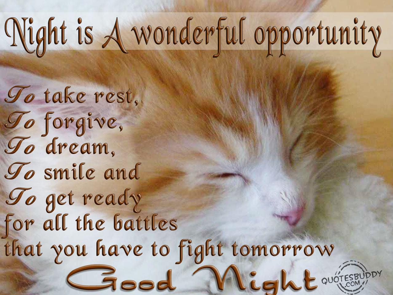 good night quotes 47