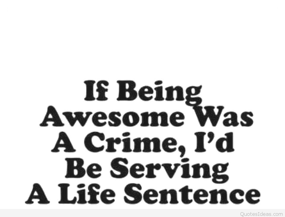 hilarious quotes 15