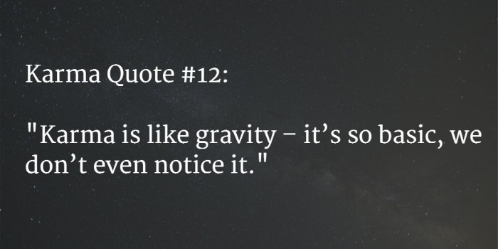 karma quote 25
