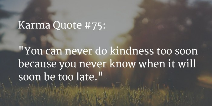 karma quote 28