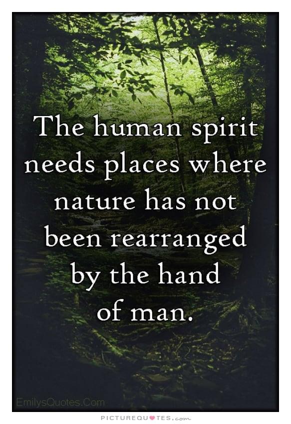 nature quote 11