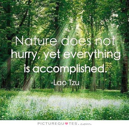 nature quote 13