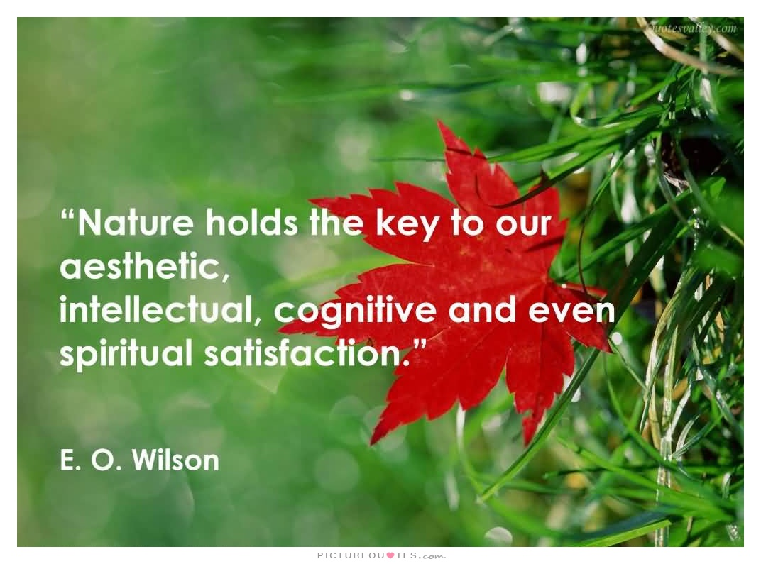nature quote 15