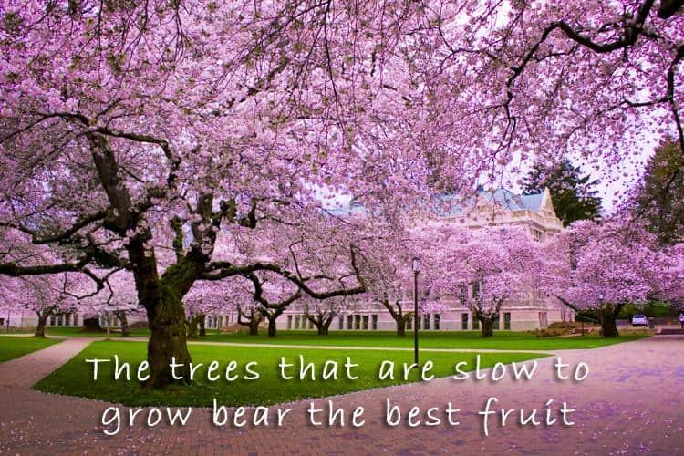 nature quote 22