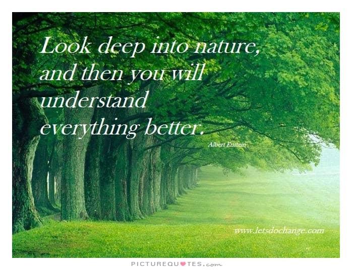 nature quote 26