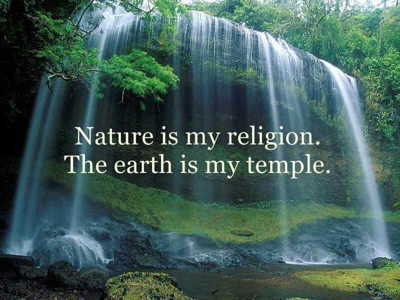 nature quote 46