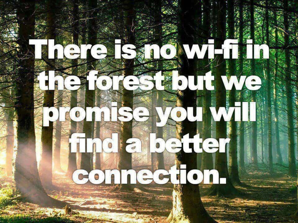 nature quote 48