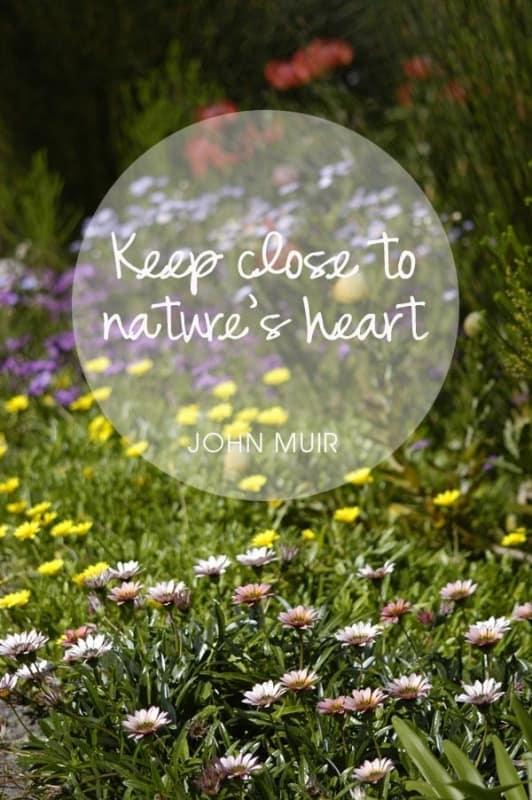 nature quote 7