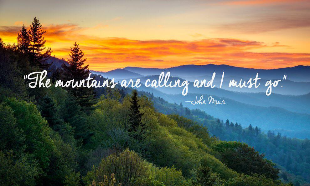 nature quotes 42