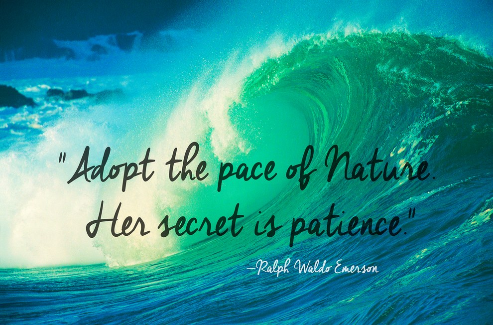 nature quotes 43