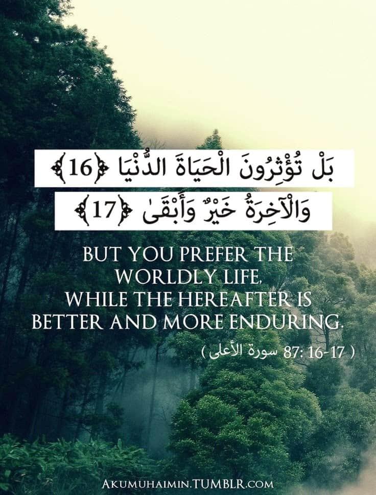 quran quotes 17