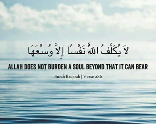quran quotes 31