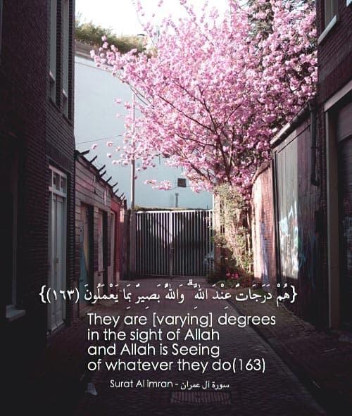 quran quotes 38