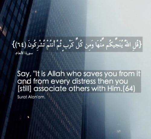 quran quotes 49