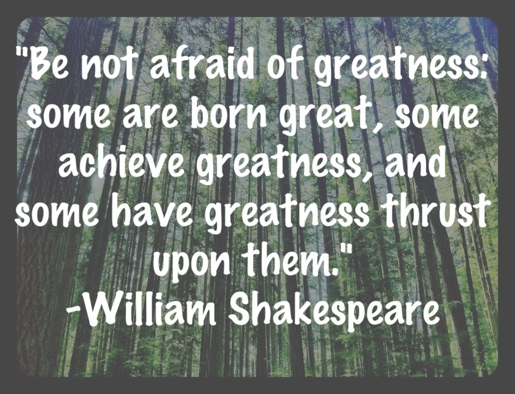 shakespeare quotes 13