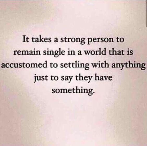 single quotes 41