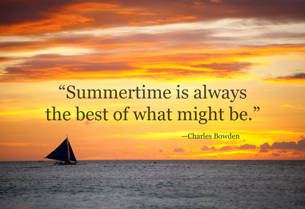 50 Summer Quotes To Make You Will Warm In The Winter