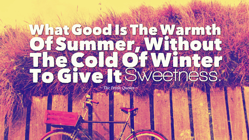 summer quotes 41