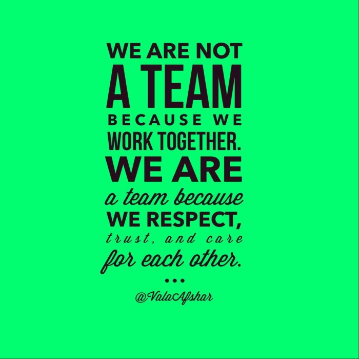 teamwork quotes 12