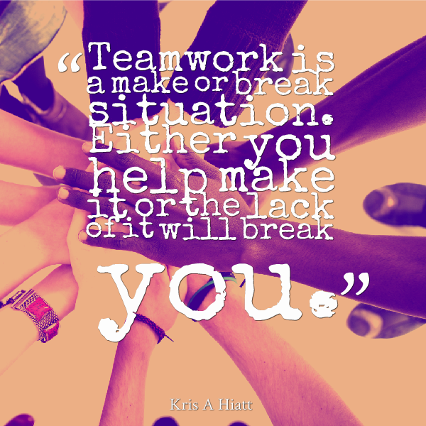 teamwork quotes 31