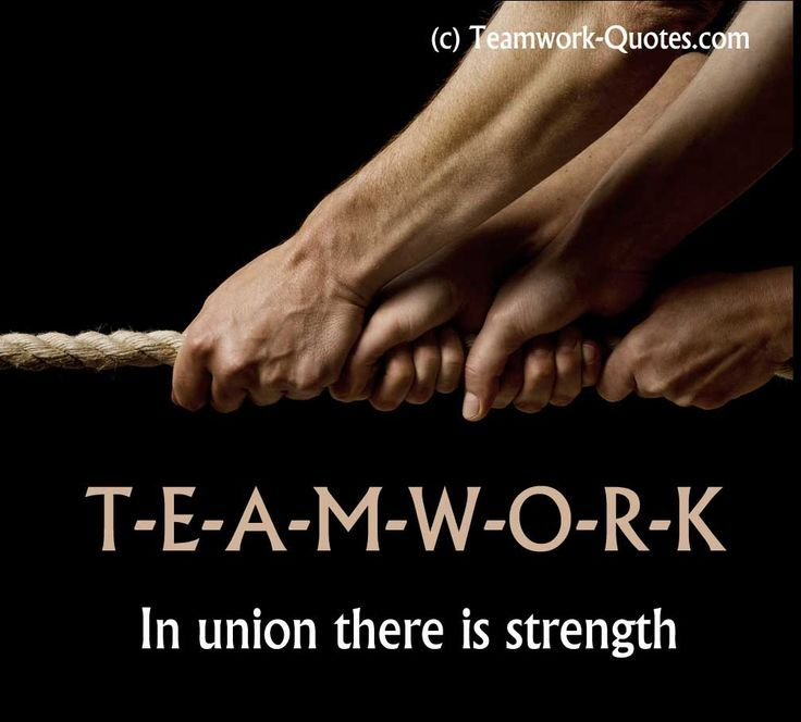 teamwork quotes 35