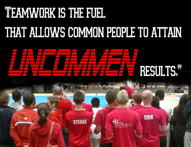 teamwork quotes 46