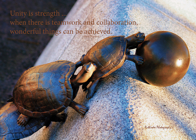 teamwork quotes 47