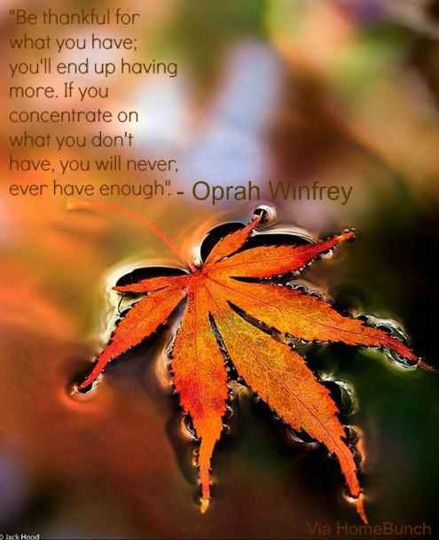 thanksgiving quotes 25