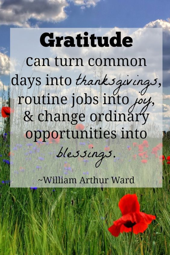 thanksgiving quotes 37