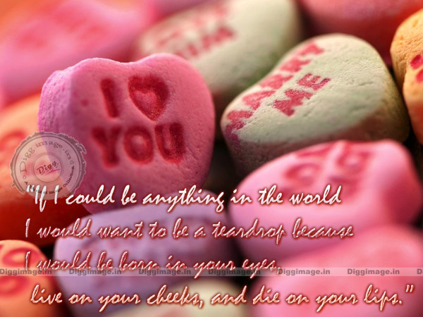 valentines day quotes 26