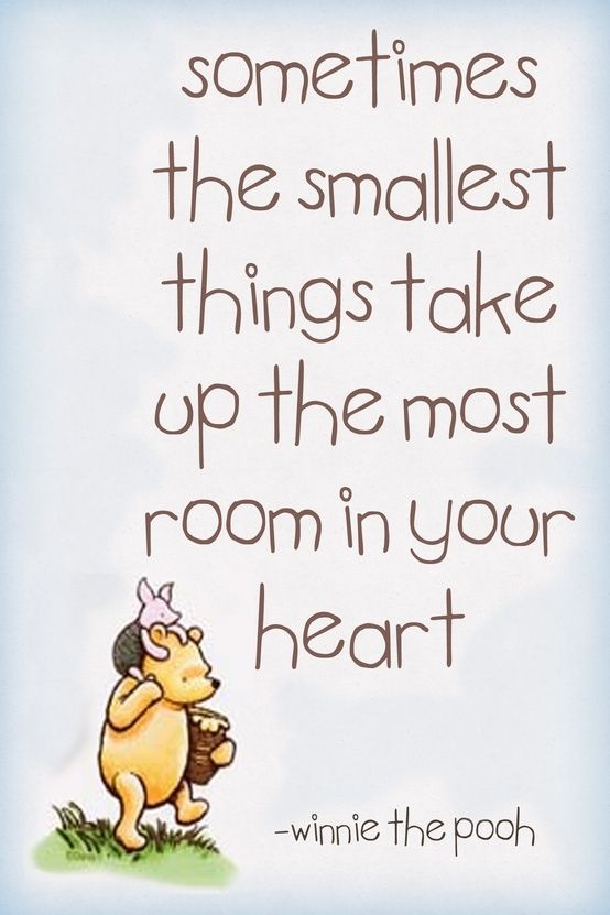 winnie the pooh quotes 5