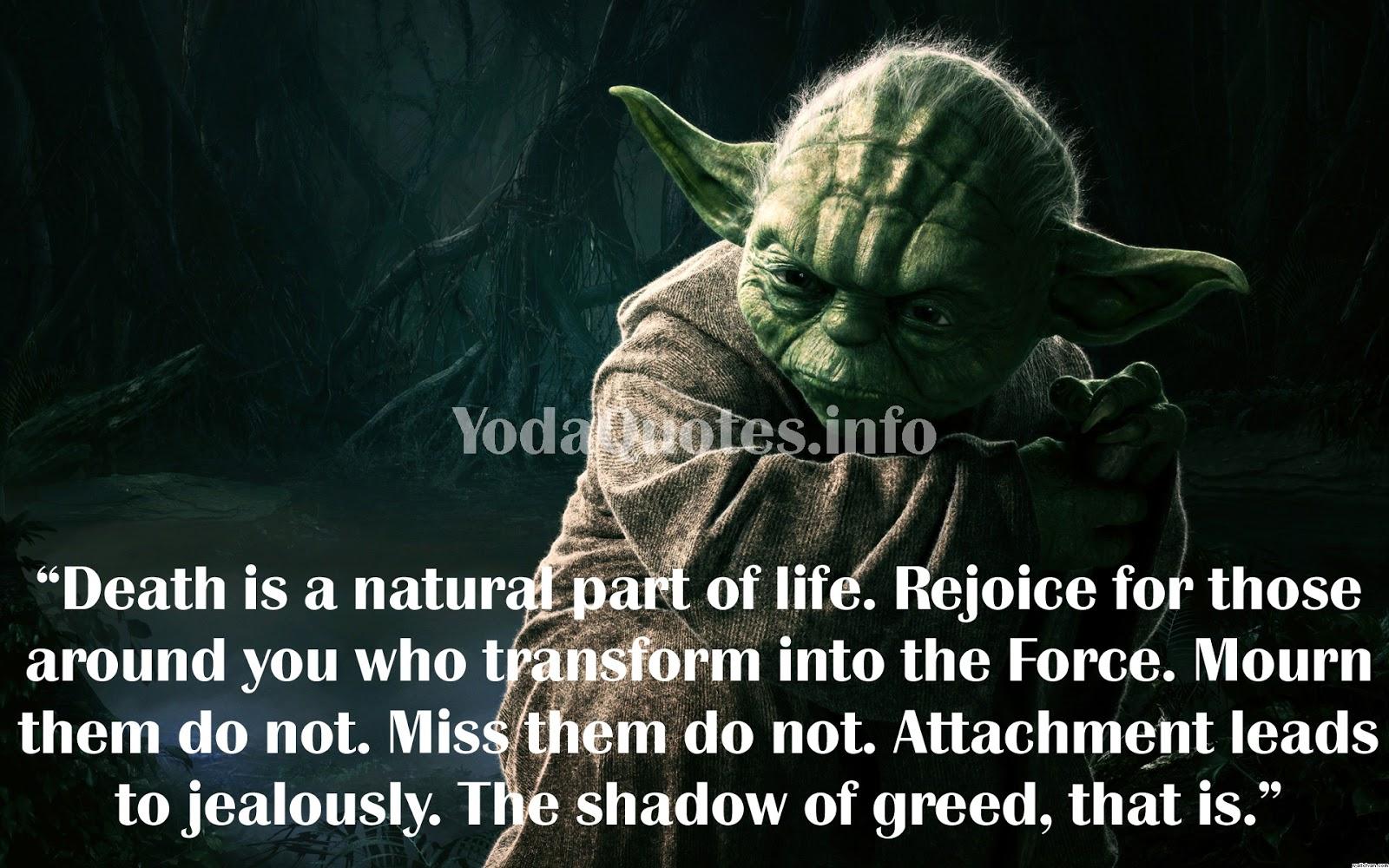 yoda quotes 6