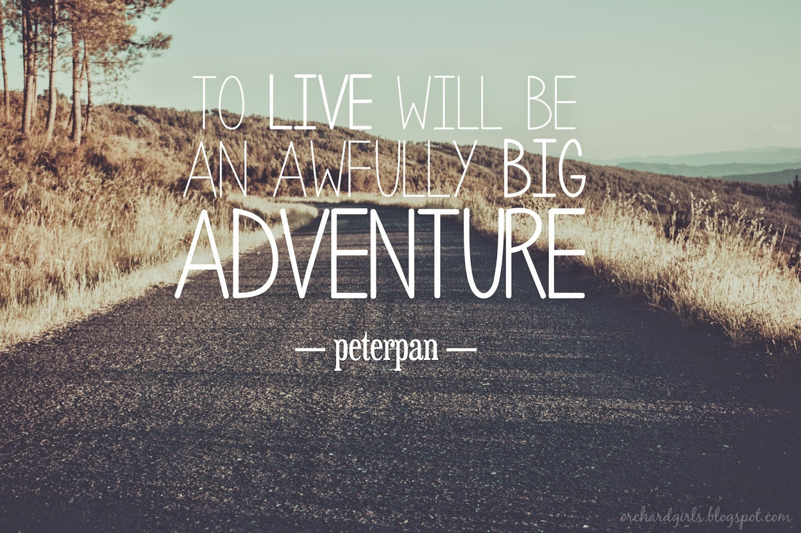 adventure-quotes-25