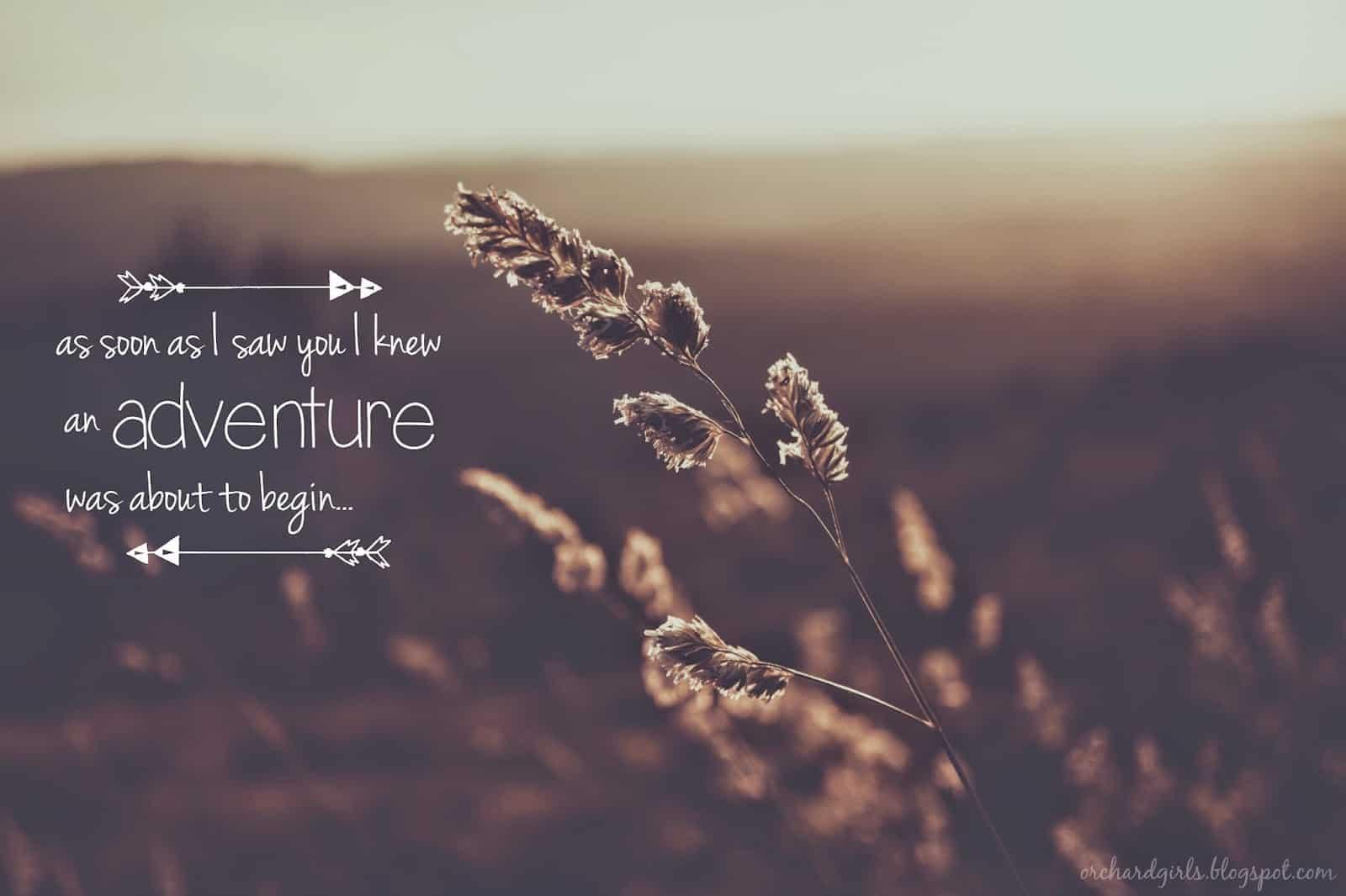 adventure-quotes-29