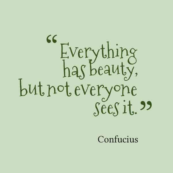 confucius quotes 17