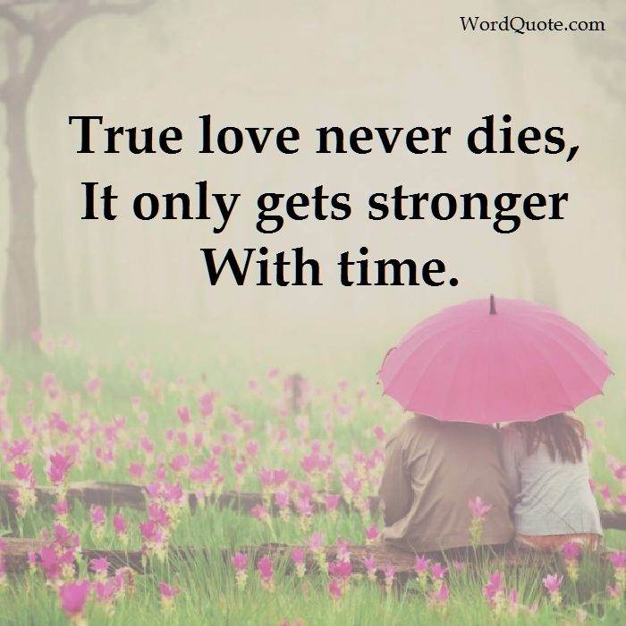 cute relationship quotes 29