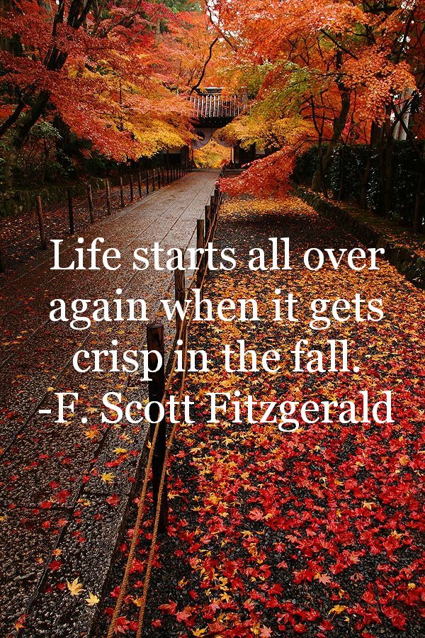 fall quotes 1